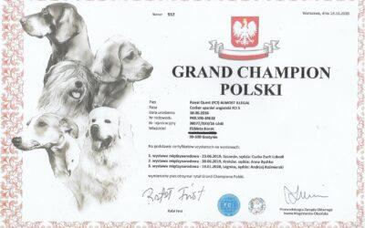 "Oficjalnie ""Asgard"" jest Grand Championem Polski"