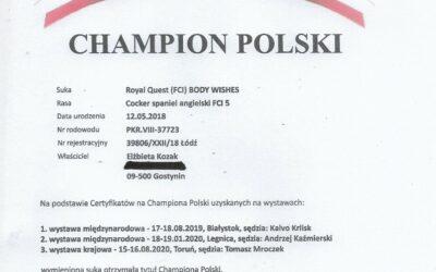 Oficjalnie Bestia jest Championem Polski